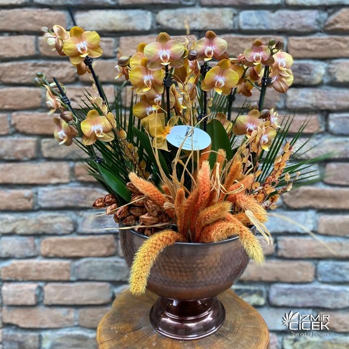 Özel Vazoda Multi Orkideler