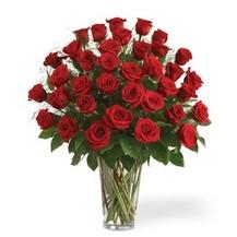 İZMİR balçova çiçek