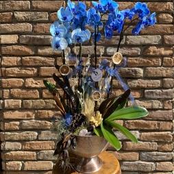 Mavi Orkide Tasarım