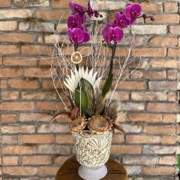 Seramikte Fuşya Orkide Tasarım