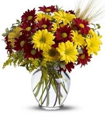 izmir bornova çiçekçilik
