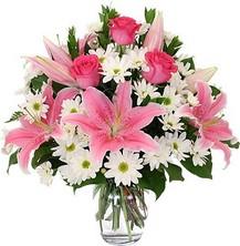 izmir Karşıyaka Çiçek Siparişi